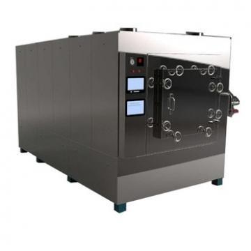 Microwave Vacuum Fruit Slice Dryer