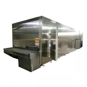 100kg/H 200kg/H Fried Frozen Potato French Fries Production Line for Sale