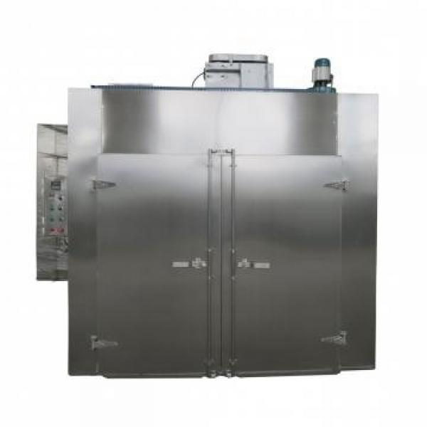 Industrial Hot Air Circulation Tray Bacon Pineapple Dryer Machine #1 image