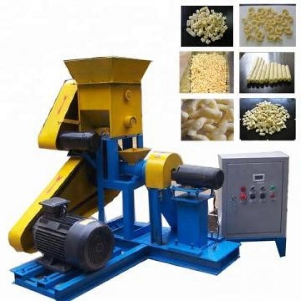 Direct Puff Kurkure Corn Snack Food Pellet Making Extruder Machine / Corn Flakes Food Machinery / Breakfase Cereal Equipment Core Filling Baby Food Line #2 image