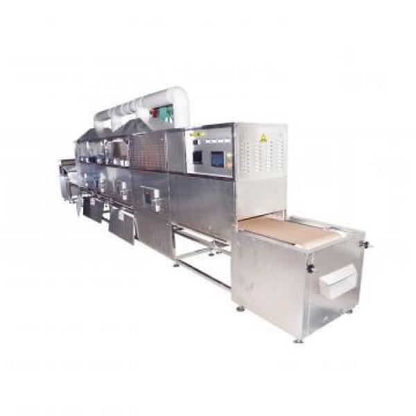 Rotary Vacuum Dryer Freeze Dryer Machine Vacuum Microwave Dryer #1 image