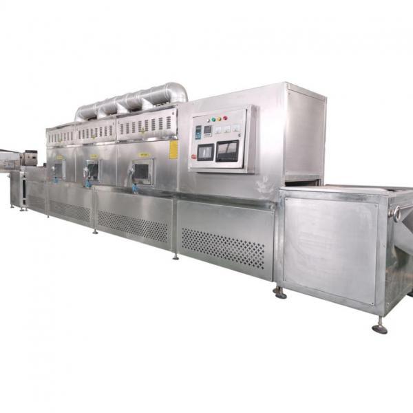 Black Soldier Larva Microwave Dryer Drying Equipment #2 image