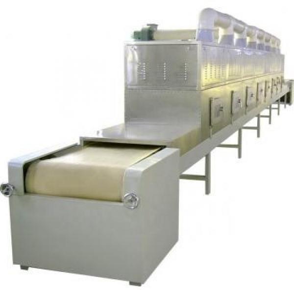 Industrial Tunnel Microwave Food Grain Nuts Fruit Vegetable Dryer Roasting Drying Curing Sterilization Machine #2 image