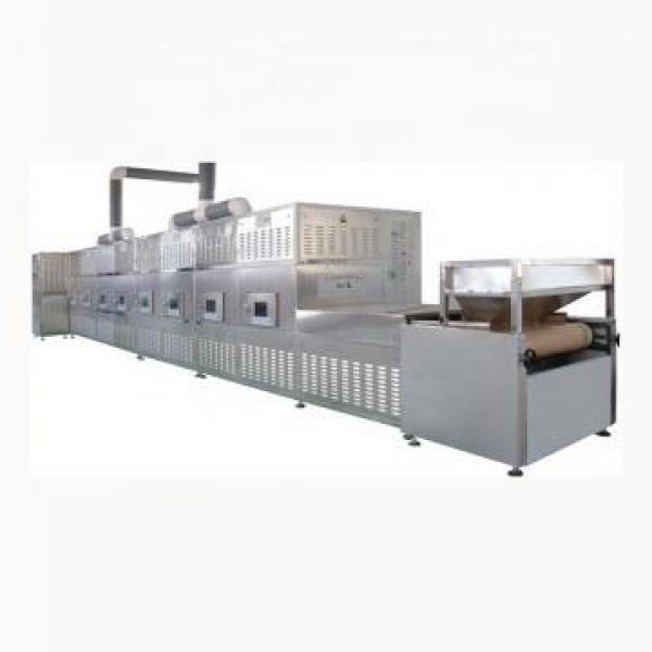 Black Soldier Larva Microwave Dryer Drying Equipment #1 image