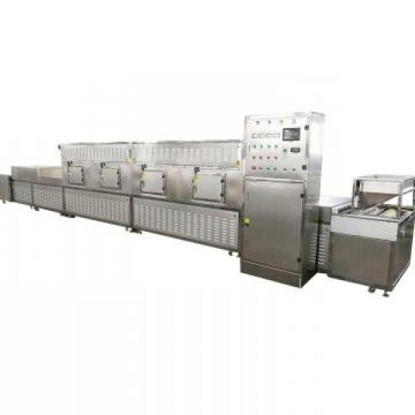 Industrial Watter-Cooling Laboratory Microwave Equipment #2 image