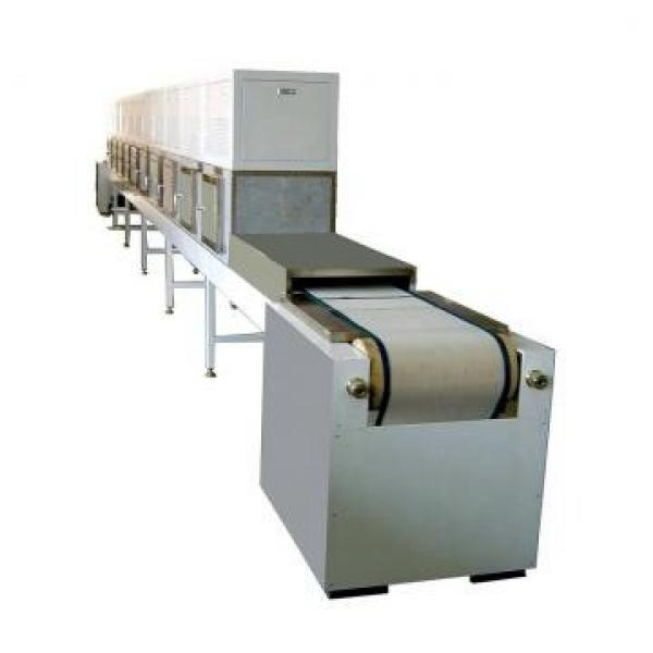 Microwave Cabinet Drying Equipment Cnwb-6X for Yellow Mealworm #2 image
