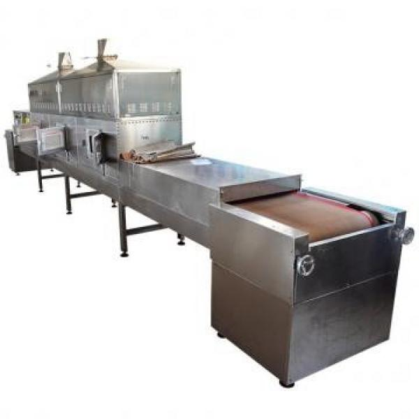 2050kg IQF Tunnel Freezer Industrial Use Freezing Machine for Seafood/Shrimp/Fish/Meat/Fruit/Vegetable/Pasta #2 image