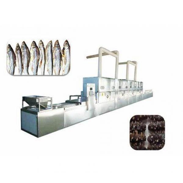 1600kg IQF Tunnel Freezer Industrial Use Freezing Machine for Seafood/Shrimp/Fish/Meat/Fruit/Vegetable/Pasta #1 image