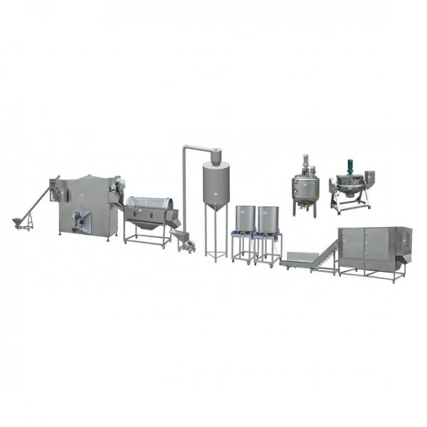 High Quality and Industrial Stainless Steel Nutritional Rice Production Line #2 image
