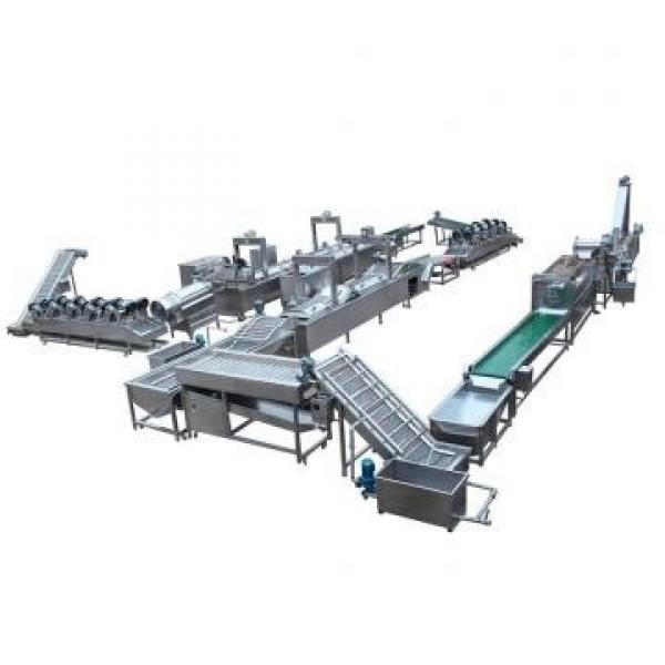 High Quality and Industrial Stainless Steel Nutritional Rice Production Line #1 image