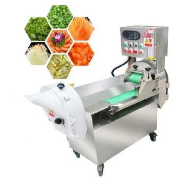 Full Automatic Frozen Vegetables Processing Line #1 image