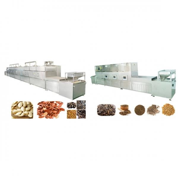 Industrial Microwave Oven Roasted Hazelnut Sterilization Machine #1 image