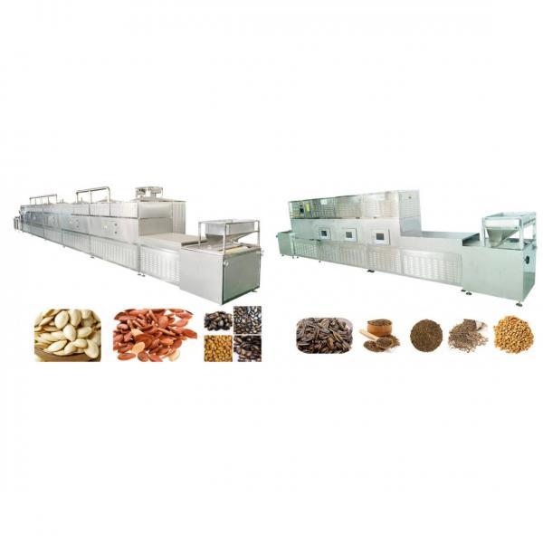 Microwave Grain Corn Grits Soyabean Mung Bean Drying Sterilizing Curing Machine #1 image