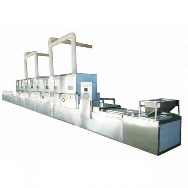 Continuous Vegetable and Fruit Dehydrator Machine #2 image