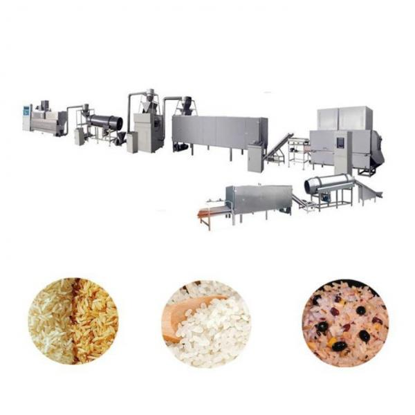 High Profitable Automatic Artificial Rice Equipment Full Automatic Production Line to Make Instant Nutritional Rice Artificial Rice Making Extruder Machine #1 image